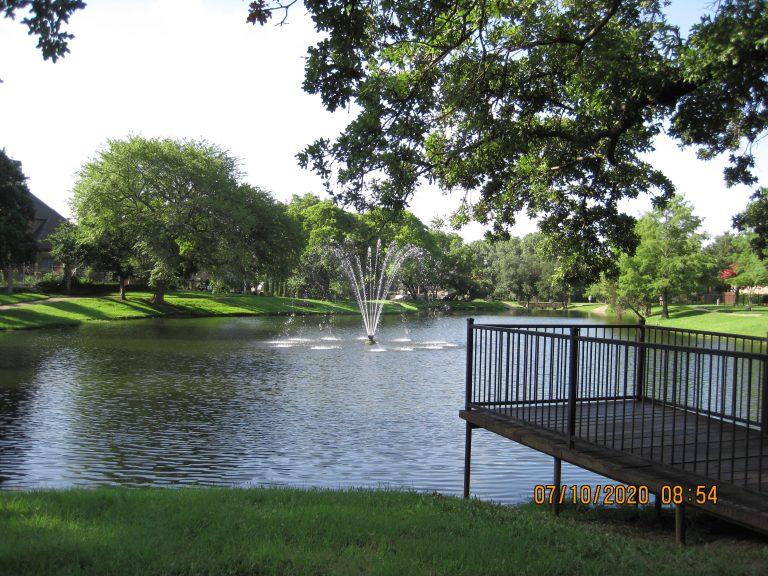 The Neighborhood Park